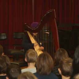 Pika Drobnič, harfa 18. 2. 2015