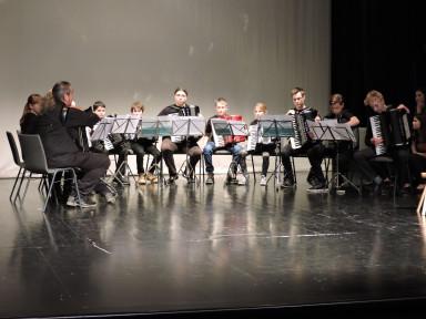 Harmonikarski orkester GŠ Tolmin