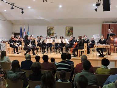 Godalni orkester GŠ Idrija