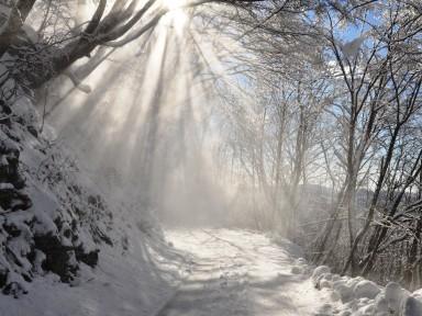 Igra svetlobe in sence v zimski pokrajini