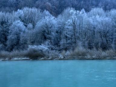 Zimsko ivje ob Soči.