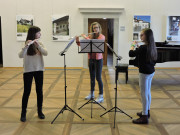 Trio Flute Coctail